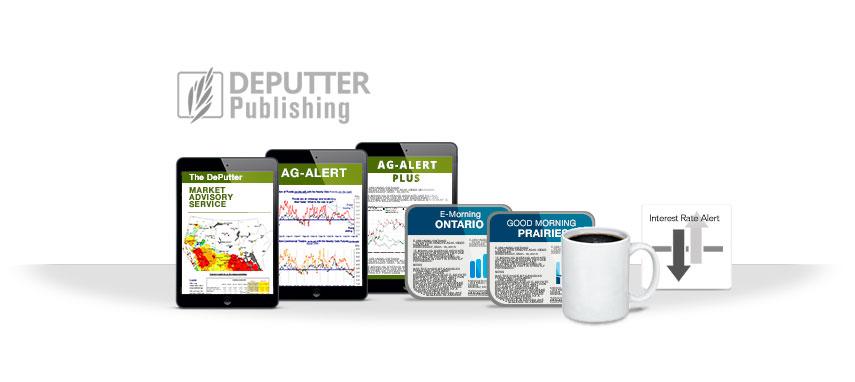 DePutter Services